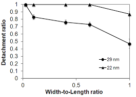 Modification of a Substrate Roughness for a Fabrication of ...