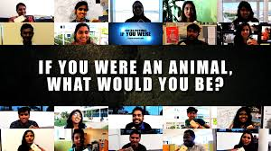 if you were an animal what would you be if you were an animal what would you be