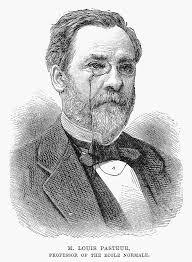 Louis Pasteur (1822-1895) Photograph - Louis Pasteur (1822-1895) - 7-louis-pasteur-1822-1895-granger