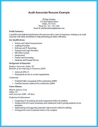 understanding a generally accepted auditor resume how to write a auditor resume 36