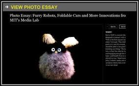 essay on extinction of species essay forums Free Essays and