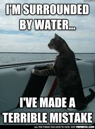 Sophisticated Cat realises he forgot one thing about boats ... via Relatably.com