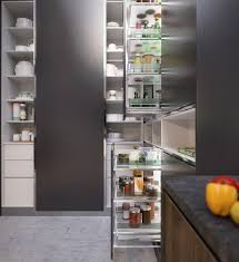 streamlined accessible kitchen storage solutions