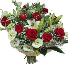 תוצאת תמונה עבור תמונות של פרחים