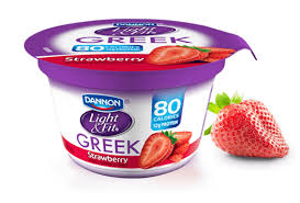 Image result for yogurt