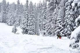 Arizona Snowbowl <b>Ski</b> Resort - Where Arizona <b>Skis</b>