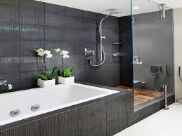 grab bar inspirations osbdata luxury bathtub bars