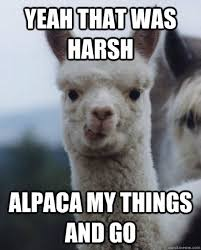 Yeah that was harsh Alpaca my things and go - Alexandra the Alpaca ... via Relatably.com
