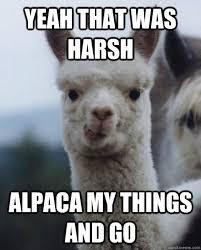 Yeah that was harsh Alpaca my things and go - Alexandra the Alpaca ... via Relatably.com