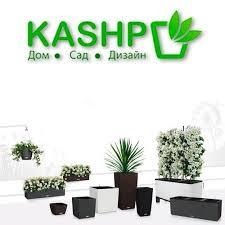 Kashpo - Posts | Facebook