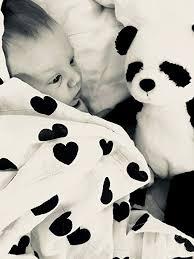 Little Bear Baby Muslin Swaddle Blanket by, 3 Pack ... - Amazon.com