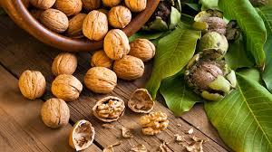 Znalezione obrazy dla zapytania walnuts