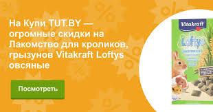 Купить Лакомство для кроликов, грызунов Vitakraft Loftys овсяные ...