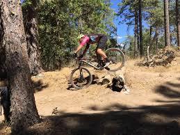 mountain bike skills fundamentals ninja mountain bike performance 8
