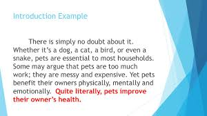 compare and contrast essay dogs and cats cuddling druggreport compare and contrast essay dogs and cats cuddling