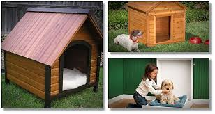 Easy build dog house plans review introduces a step by step    easy build dog house plans in pdf format