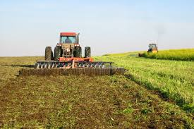 Meaning, types, and advantages and disadvantages of green manuring in agriculture