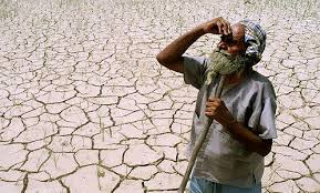 essay on farmer suicides in india for free reading only  farmer suicide in india