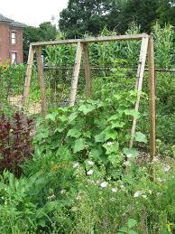 Garden Plan Help, Please! Images?q=tbn:ANd9GcSbS3EVNw3if_-d1F1gDxxvWEG9jaOBSh1YoX8h2Qs4mluETwKTLw