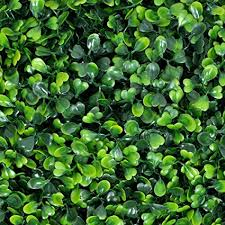 Artificial Topiary Hedge Plant Privacy Fence Screen ... - Amazon.com