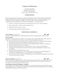 Free Resume Template Highlighting Skills  Template For A