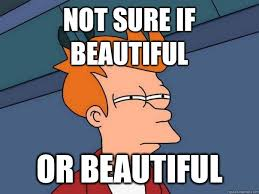 Not sure if Beautiful Or beautiful - Futurama Fry - quickmeme via Relatably.com
