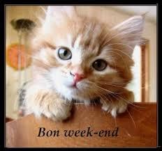 """Résultat de recherche d'images pour """"passe un bon week end"""""""