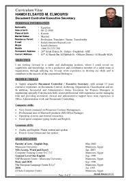 hamdi elmoursi summarized cv 2015