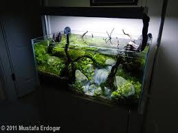 Whole <b>tank</b> - great #<b>aquarium</b> Decorative Materials <b>Silica</b> sand ...
