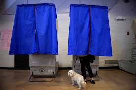 in person voting fraud is rare doesn t affect elections pbs a voter her dog casts her ballot in the pennsylvania primary at a polling place