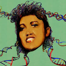 the immortal life of henrietta lacks the sequel the new york times recent comments