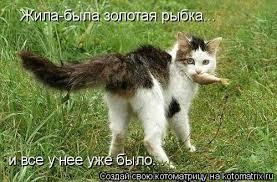 Российская экономика успешно адаптируется, - Путин - Цензор.НЕТ 5927