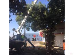 ift featured long beach california job setting up for the dual 54 in linestops in long beach california