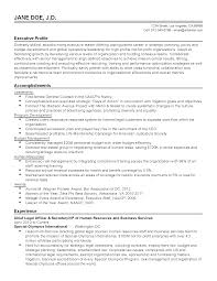 professional chief legal officer templates to showcase your talent resume templates chief legal officer