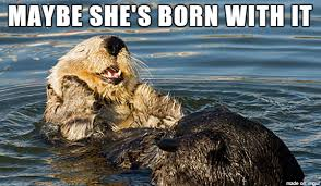 Opulent Otter - Meme on Imgur via Relatably.com