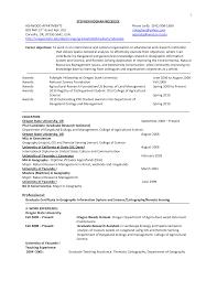 gis resumes template gis resumes