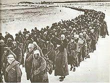 「独ソ戦: 冬の嵐作戦」の画像検索結果