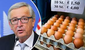 Egg scandal: European Union KNEW about Fipronil contamination ...