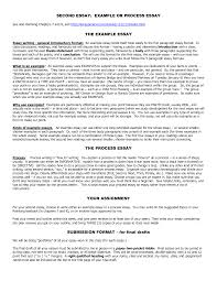 examples of process essay wwwgxartorg