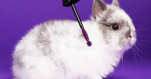 Where To Buy <b>Wet n Wild's</b> Purple <b>Lash Renegade Mascara</b> To ...