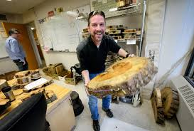Minnesota scientists probe tree rings for clues to climate history     Star Tribune