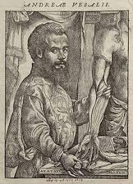 Resultado de imagen de Vesalio y Copérnico.