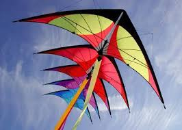 Berkeley Kite Festival: What you need to know before you go