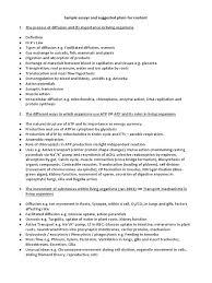 synoptic essay plans