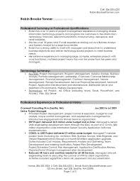professional summary resume examples professional resume summary examples 77e7fb28f example of professional summary for resume