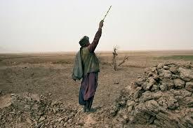 buy essay soviet afghan war related post of buy essay soviet afghan war