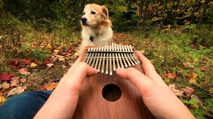 Can't Help Falling In Love on a Kalimba - YouTube