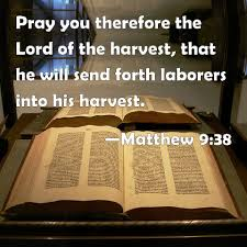 Image result for Matthew 9:38