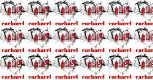 In the Name of Love – <b>Cacharel My Amor</b> Do It Yourself! ~ New ...