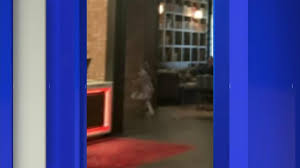 Photo appearing to show <b>ghost girl</b> in Springfield goes viral | News ...